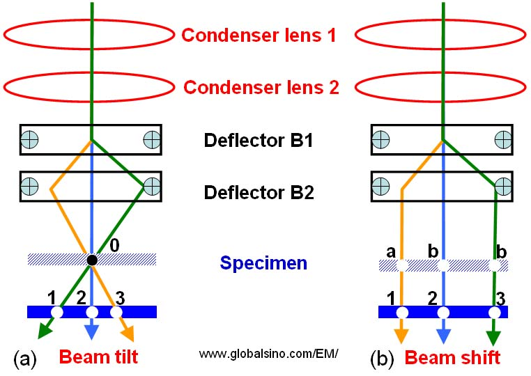 Schematic illustration showing the difference of specimen traverses in both beam tilting and beam shifting process