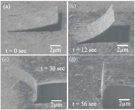 SIM snapshots captured at different stages of the ion-beam-induced bending of an Ag nanocantilever