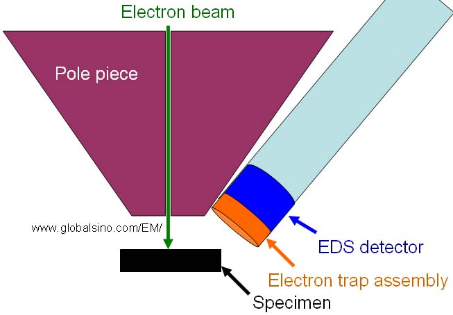 Schematic illustration of an SEM equipped with an electron trap in EDS system