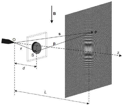 In-line point source electron holographic setup
