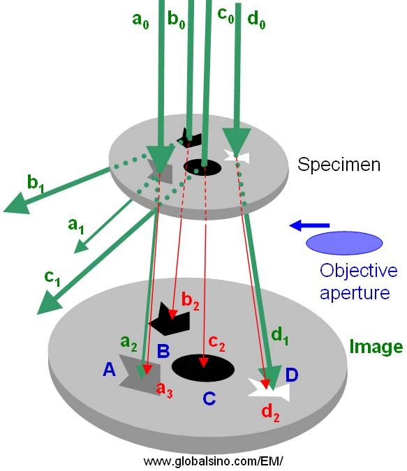 Schematic illustration of diffraction contrast formation in TEM imaging mode
