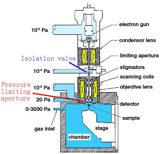 Schematic cross section of an Electroscan ESEM
