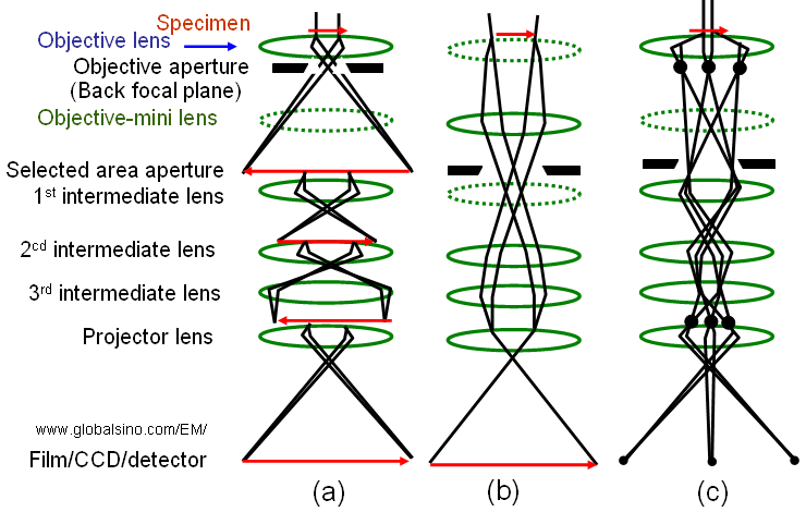 selected area electron diffraction pdf