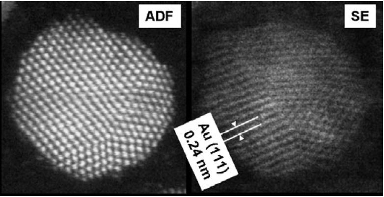 (a) HAADF-STEM and (b) SE images of a gold nanoparticle, indicating Au(111) lattice fringes