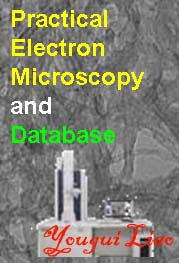 Practical Electron Microscopy and Database
